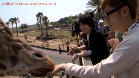shirokuma_cafe_bonus_zoo_trip_dvd_screencap_group_safari_ride_feeding_giraffes_01