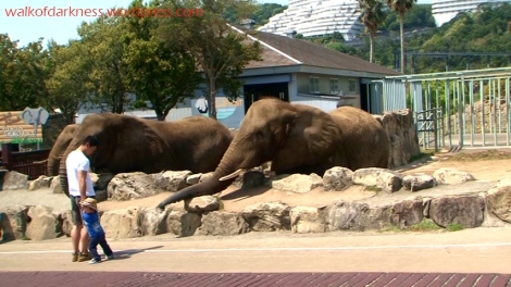 shirokuma_cafe_bonus_zoo_trip_dvd_screencap_group_safari_ride_screaming_kid_and_elephants