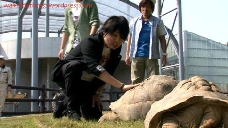 shirokuma_cafe_bonus_zoo_trip_dvd_screencap_takayuki_kondo_talking_to_tortoise