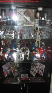 knk_collection_display_case_01